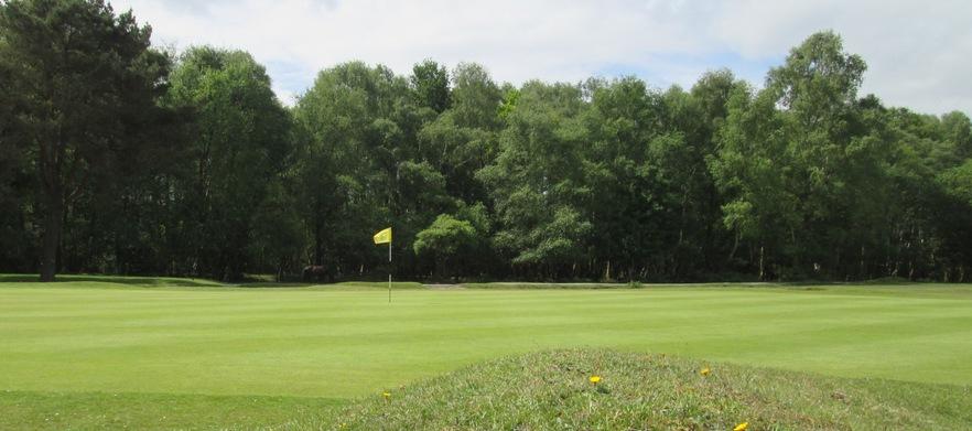 Nfgc for golf deals group %285%29