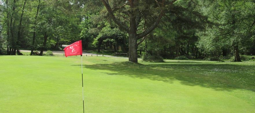 Nfgc for golf deals group %283%29