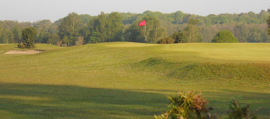 Nfgc for golf deals group %282%29