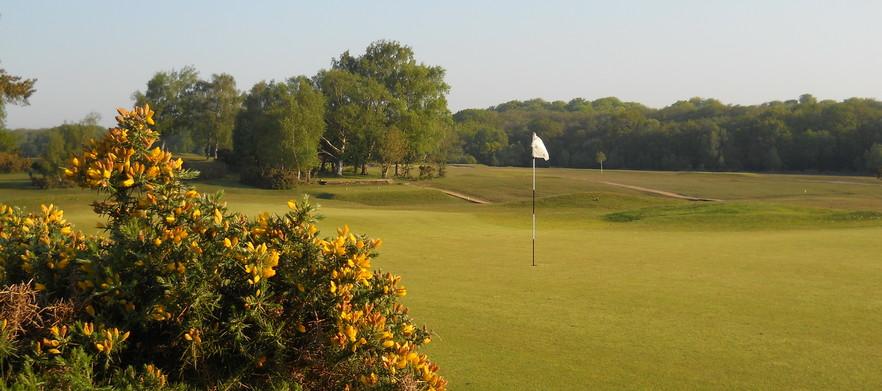 Nfgc for golf deals group %281%29