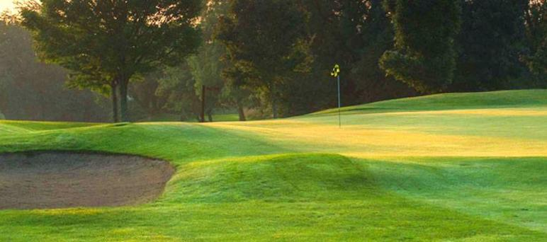 Old Country Golf & Tours
