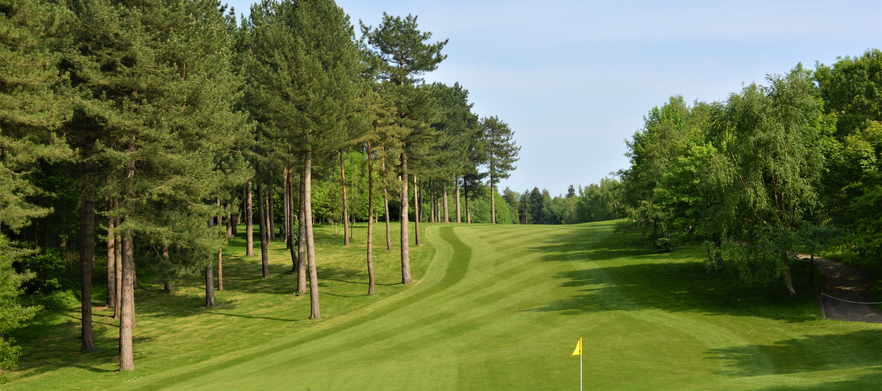 Homepage  15th green   pines